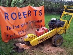 Roberts, The Tree Stump Specialist's Photo