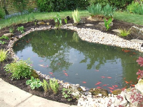 pond by oaktrees gardening